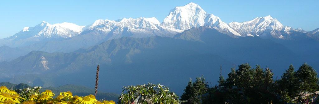 Treks in the Nepal Himalayas