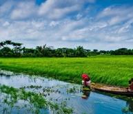glimpses of bangladesh, dhaka, yamuna river cruise, paharpur unesco world heritage site, mauryan ruins of pundranagara,