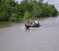 sundarbans wildlife cruise, mangrove forest, tiger tracking, ganges river,