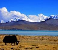 Tibet TAR