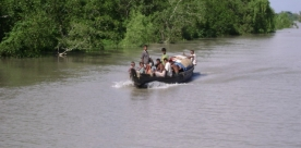 Sundarbans Wildlife Cruise