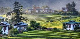 Tashi Delek Bhutan Plus