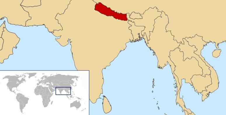 bird watching in nepal, ibisbill, bengal florican,