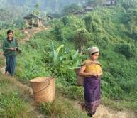 chittagong hill tribal culture tour, rangamati hill, bandarban, kaptai lake, cox's bazar,